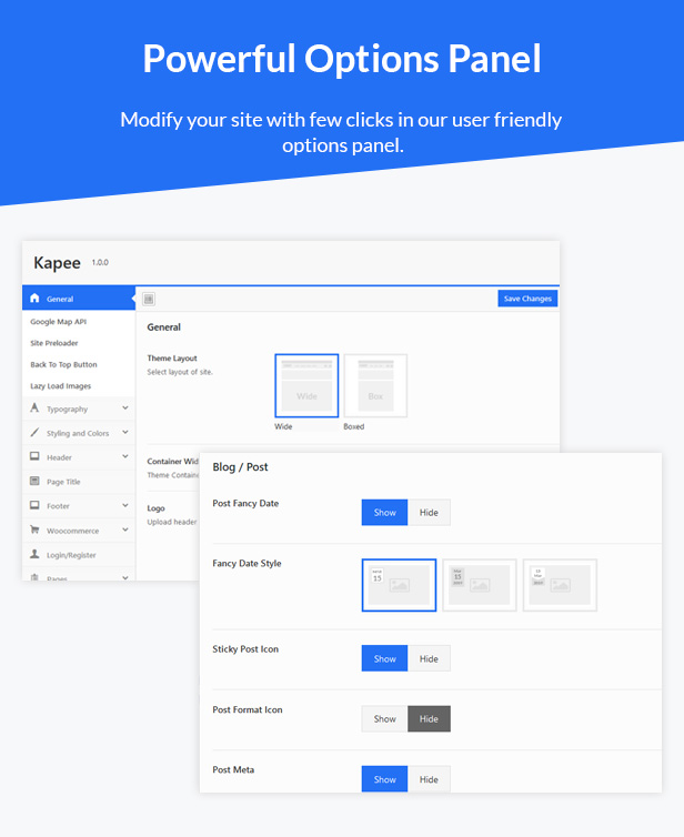 options-panel